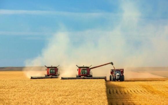 Влада бере аграріїв під ковпак — на всі комбайни встановлять лічильники зерна фото, ілюстрація