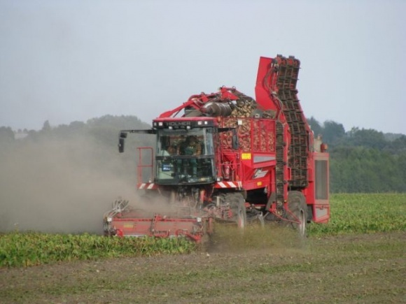 Жатва-2020: В Украине собрано первые 242 тыс. тонн сахарной свеклы фото, иллюстрация