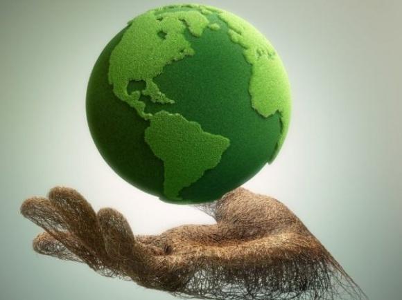 Еврокомиссия опубликовала список экологических схем субсидирования сельского хозяйства ЕС фото, иллюстрация