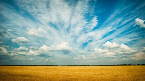 Facebook-гектар: що пишуть депутати про земельну реформу фото, ілюстрація