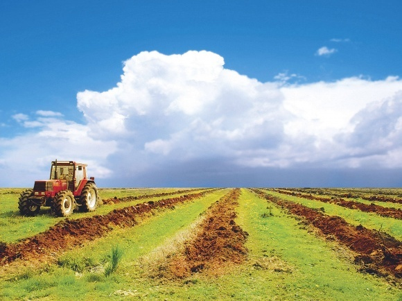 ВРУ может осенью рассмотреть запуск рынка земли в Украине фото, иллюстрация