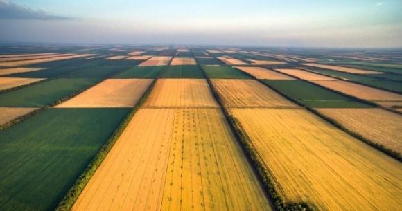 На земельную реформу и сельское хозяйство привлекут 26 млн евро помощи ЕС фото, иллюстрация