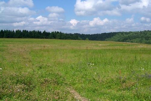 Хитрий фермер втратив землі вартістю майже 50 млн грн фото, ілюстрація