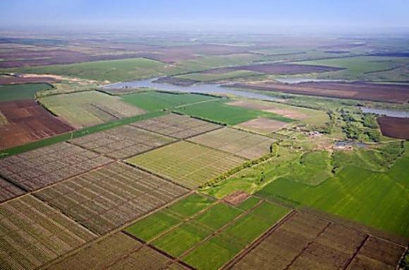 На Херсонщине сотни гектаров земли отдали российскому бизнесмену фото, иллюстрация