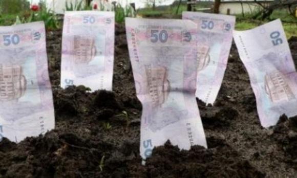 После отмены моратория на землю ее цена в Украине может увеличиться  втрое  фото, иллюстрация