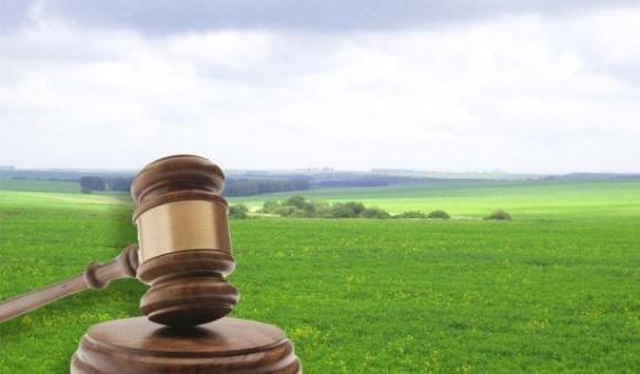 В Украине состоялся первый электронный земельный аукцион фото, иллюстрация
