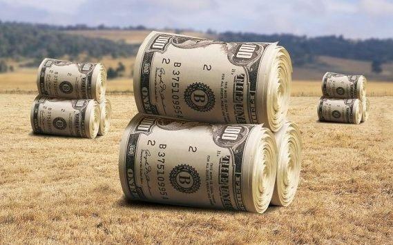 НБУ називає аграріїв найнадійнішими позичальниками фото, ілюстрація