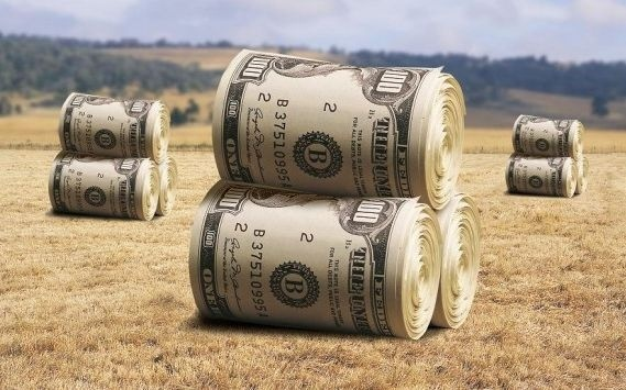 FAO рекомедует правительству уменьшить ставку кредита для аграриев до 1-5% фото, иллюстрация