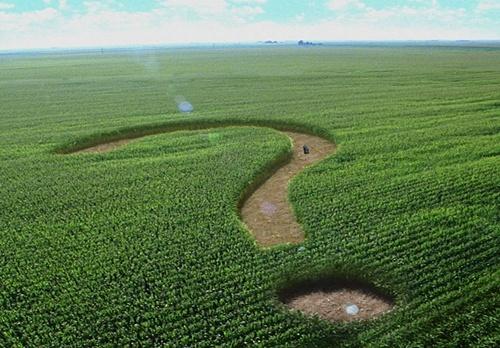 Рада планує продовжити мораторій на продаж землі — Парубій фото, ілюстрація