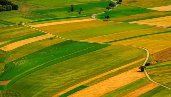 В Германии земельный налог составляет от 5 до 20 евро/га фото, иллюстрация