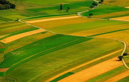Відкриття ринку землі в Україні. У кабміні назвали приблизну ціну одного гектару фото, ілюстрація
