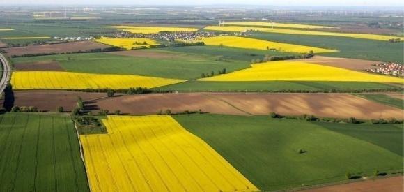 За 3 года только треть сельских населенных пунктов вошла в состав ОТО фото, иллюстрация