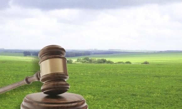 Против продажи земли выступают 62% граждан Украины, – опрос фото, иллюстрация