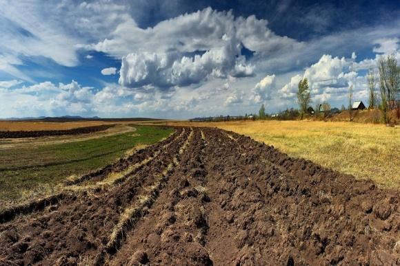 Земельный рынок Украины - один из самых дешевых в Европе фото, иллюстрация