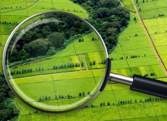 В Госгеокадастре обнаружили недостаток более 5 млн га земли в государственной собственности фото, иллюстрация