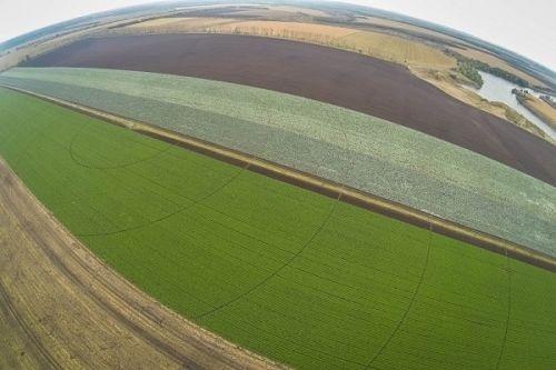 ТОП-10 агрохолдингів Росії по землям в обробці фото, ілюстрація