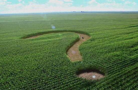 ЄС вимагає від України відкрити ринок землі, бо має власний інтерес фото, ілюстрація