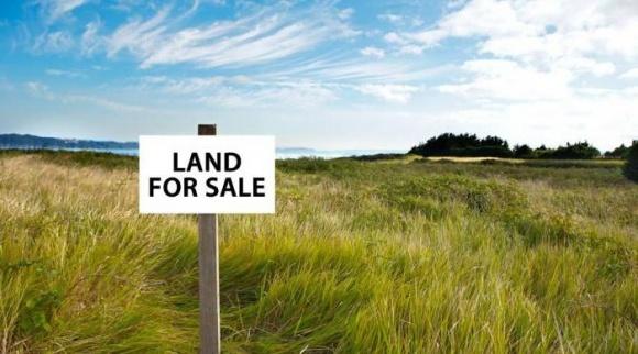 Більшість представників агробізнесу проти купівлі-продажу землі фото, ілюстрація