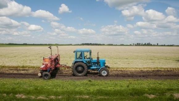 Более 60% агрокомпаний не готовы покупать землю, - опрос фото, иллюстрация
