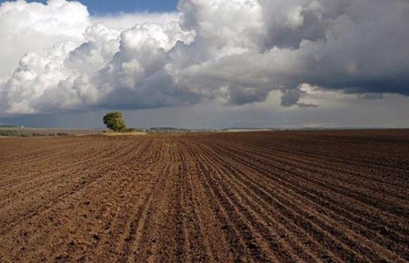 Запуск земельного ринку не підтримують у ВРУ, - Мінагрополітики фото, ілюстрація