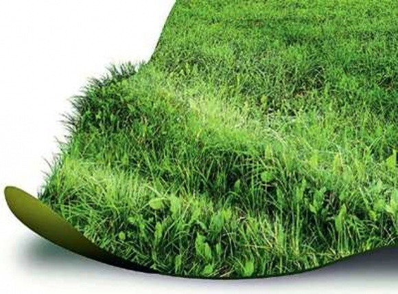 ВРУ предлагает заменить приватизацию земель на аукционы фото, иллюстрация