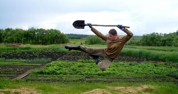 Агролайфхаки тижня: роботи наступають і чи можна курити конопляні шкарпетки фото, ілюстрація