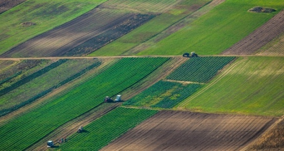 Рада сегодня рассмотрит законопроекты о земле  фото, иллюстрация