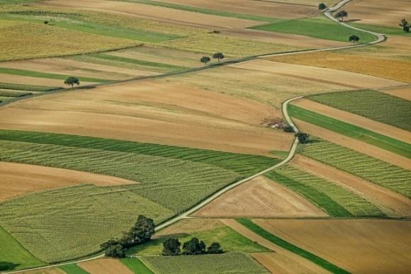 В шаге от продажи земли ... фото, иллюстрация