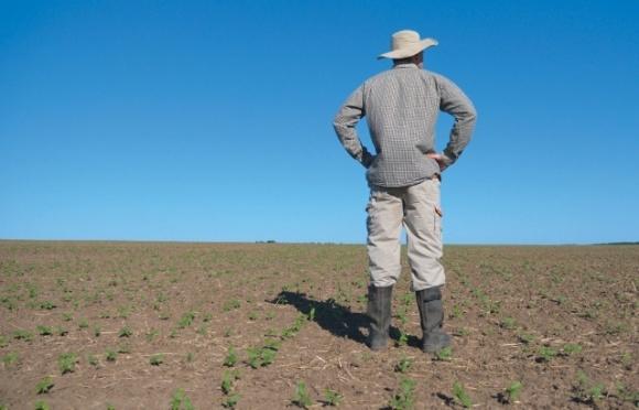 Даже 10 тысяч гектаров земли в одни руки много, — эксперт о заявлении Зеленского фото, иллюстрация