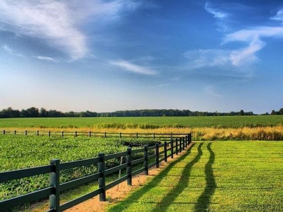 Рассмотрение законопроекта об открытии рынка земли отложили фото, иллюстрация