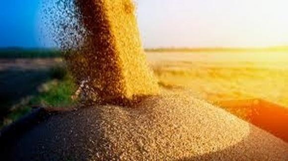 В Україні вже зібрано більше 60 млн тонн зерна фото, ілюстрація
