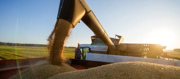 Австралийский зерновой гигант GrainCorp открыл отделение в Украине фото, иллюстрация
