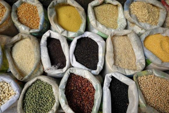 Мінагрополітики хоче збільшити обсяги експорту зернових та кукурудзи фото, ілюстрація
