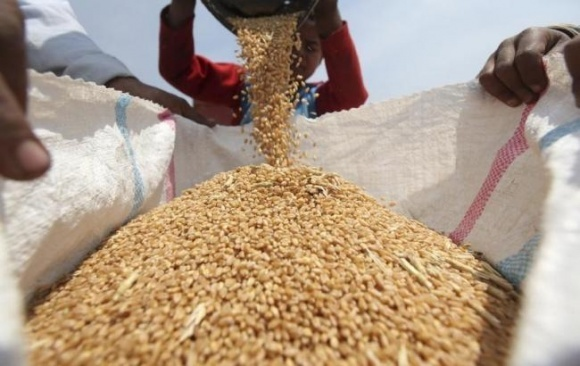 У жовтні Індекс продовольчих цін ФАО продовжив знижуватися п'ятий місяць поспіль фото, ілюстрація
