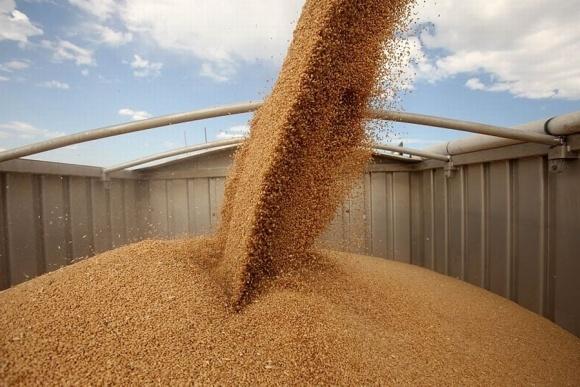 Україна збільшила експорт зернових фото, ілюстрація