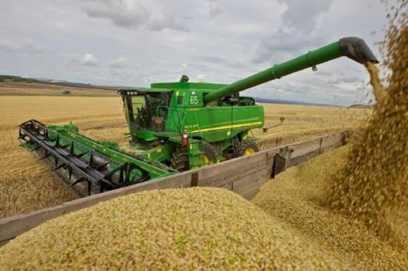 Укрепиться гривне помог рекордный экспорт зерновых, — Минфин фото, иллюстрация