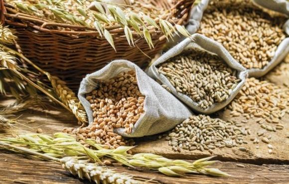 Світові ціни на продовольство за рік зросли більш ніж на 10% фото, ілюстрація