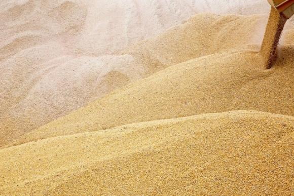 Розповсюдження коронавірусу опускає ціни на пшеницю фото, ілюстрація