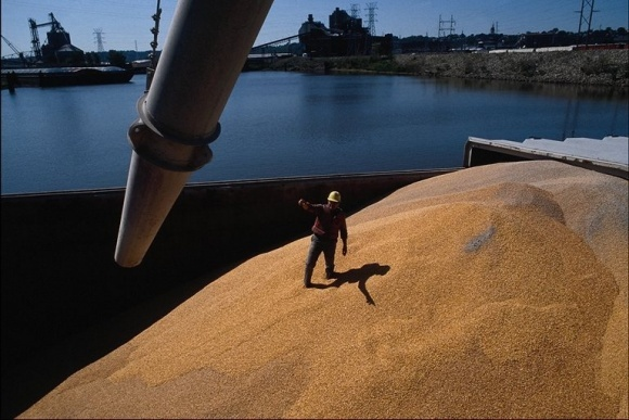 """""""ОККО Агротрейд"""" увеличит объемы экспорта зерновых и бобовых фото, иллюстрация"""