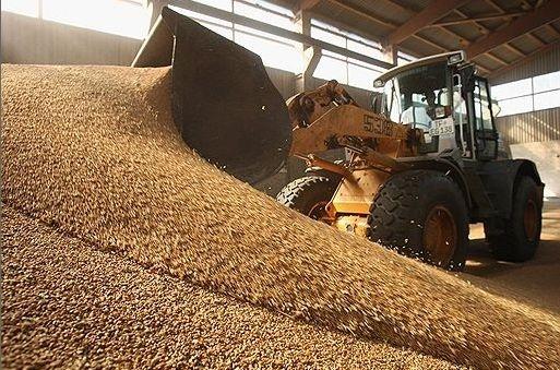 Для оптимізації агрологістики необхідно залишити 3 класи зерна, - експерт фото, ілюстрація