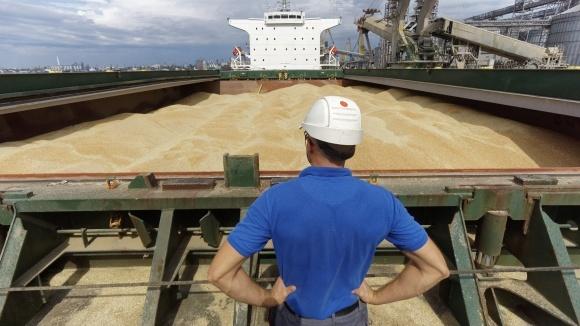Топ-3 импортера украинского зерна фото, иллюстрация