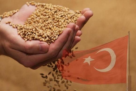 Туреччина обнулила ввізне мито на пшеницю, ячмінь і кукурудзу фото, ілюстрація