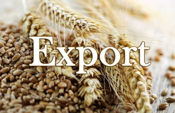 Эксперт объяснил, как повлияет остановка экспорта зерновых на украинские компании фото, иллюстрация