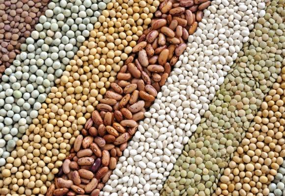 Винницкие аграрии собрали 4 млн тонн зерна фото, иллюстрация
