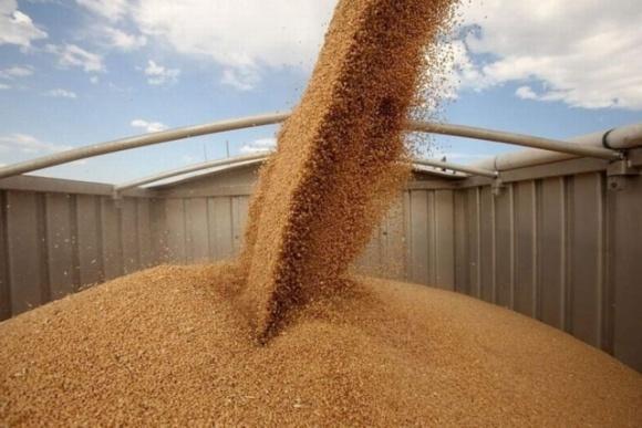 Україна вже експортувала 34 мільйони тонн зернових фото, ілюстрація