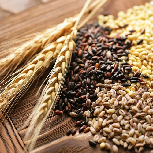 У найближчі 5 років Україна може наростити річне виробництво зернових і олійних до 100 млн. тонн на рік - УЗА фото, ілюстрація