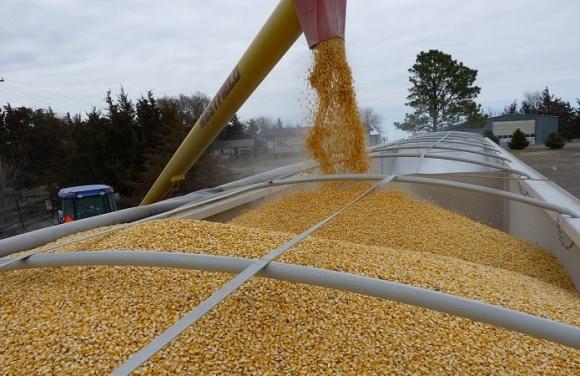 ТОП-20 країн-імпортерів українських зернових фото, ілюстрація
