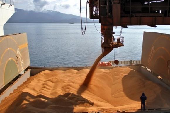 Отследить владельца партии при экспорте зерна станет сложнее фото, иллюстрация