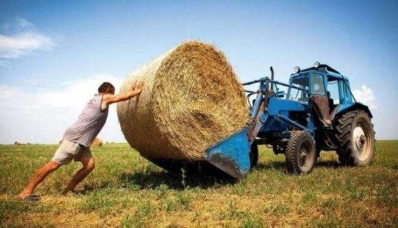 """Після ухвалення """"земельного"""" закону слід подбати про підтримку фермерів, - експерт фото, ілюстрація"""