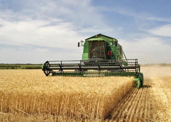 Аграрії намолотили понад 14 млн т зерна: Херсонщина та Миколаївщина лідирують фото, ілюстрація